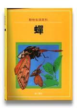 動物生活百科-蟬