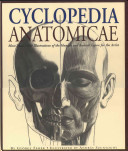 Cyclopedia Anatomica...