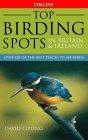 Top Birding Spots in Britain & Ireland