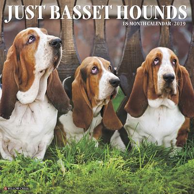 Just Basset Hounds 2...