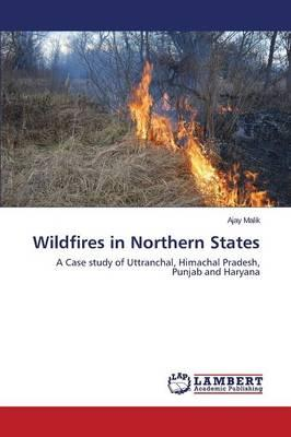 Wildfires in Northern States