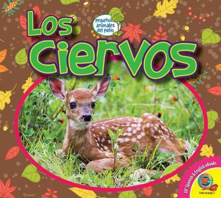 Los Ciervos / Deer