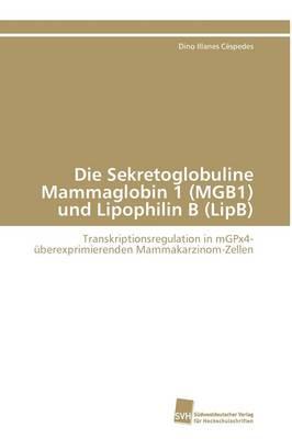 Die Sekretoglobuline Mammaglobin 1 (MGB1) und Lipophilin B (LipB)
