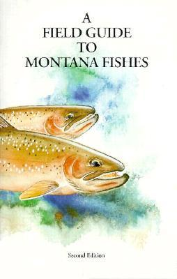 A Field Guide to Montana Fishes