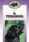 Il terranova