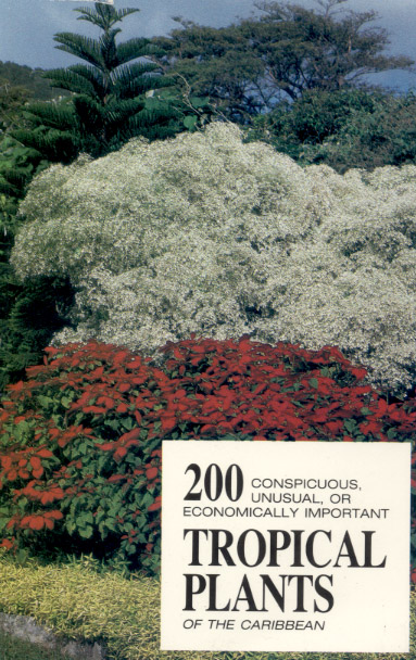200 conspicuous, unusual, or economically important tropical plants of the Caribbean