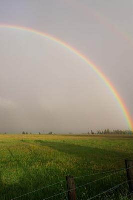 Rainbow Pasture Jour...