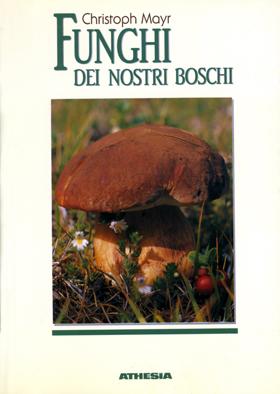 Funghi dei nostri boschi