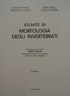 Atlante di morfologia degli invertebrati