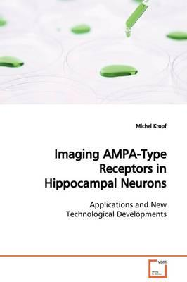 Imaging AMPA-Type Receptors in Hippocampal Neurons