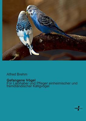 Gefangene Vögel