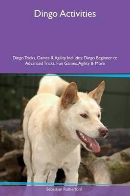 Dingo Activities Dingo Tricks, Games & Agility Includes
