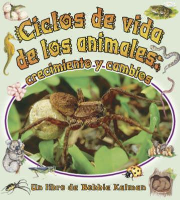 Ciclos De Vida De Los Animales/Animal's Life Cycle