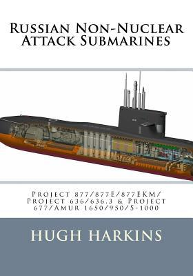 Russian Non-nuclear Attack Submarines