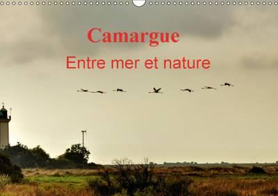 Camargue Entre mer et nature 2015