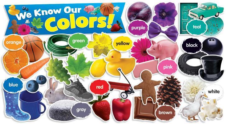 Colors in Photos Mini Bulletin Board