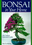 Bonsai In Your Home