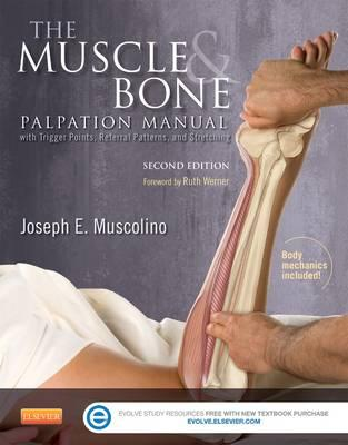 The Muscle and Bone Palpation Manual with Trigger Points, Referral Patterns and Stretching, 2nd Edition