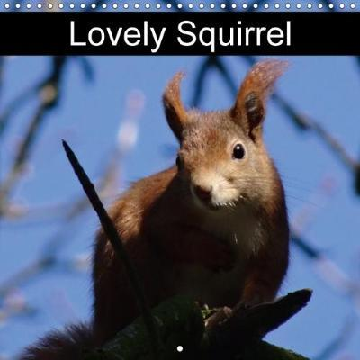 Lovely Squirrel (Wall Calendar 2018 300 × 300 mm Square)