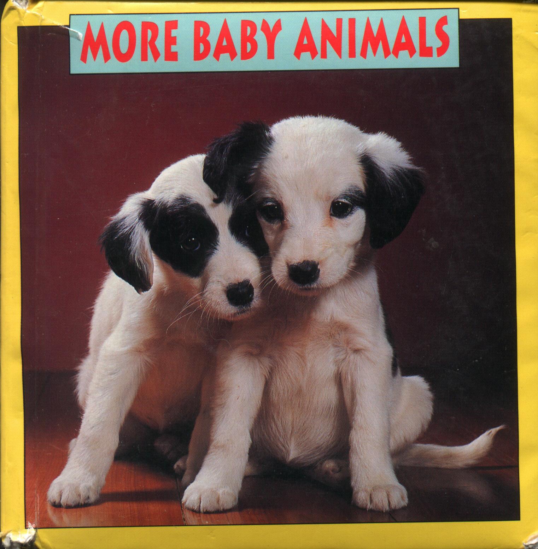 More Baby Animals