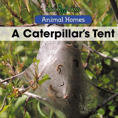 A Caterpillar's Tent