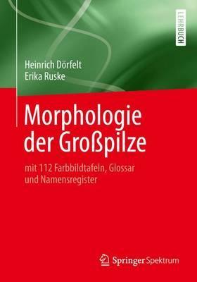 Morphologie Der Grosspilze