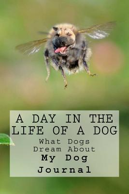 A Day in the Life of a Dog