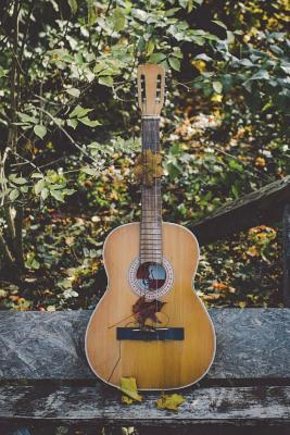 The Acoustic Guitar Journal