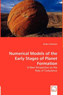Numerical Models of the Early Stages of Planet Formation
