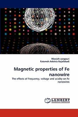 Magnetic properties of Fe nanowire