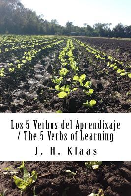 Los 5 Verbos Del Aprendizaje / The 5 Verbs Of Learning