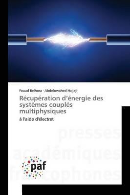 Recuperation d'Energie des Systemes Couples Multiphysiques