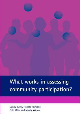 What Works In Assessing Community Participation?