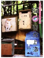 貓眼兒在上海