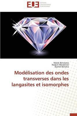 Modélisation des Ondes Transverses Dans les Langasites et Isomorphes