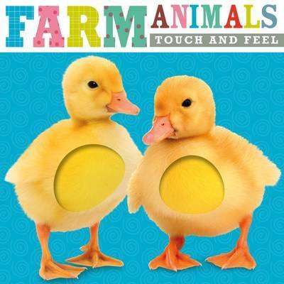 Touch & Feel Farm Animals