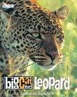 Big Cat Diary: Leopard: Leopard