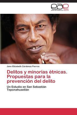Delitos y minorías étnicas. Propuestas para la prevención del delito