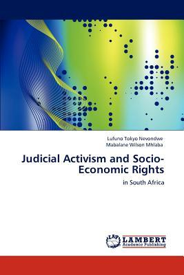 Judicial Activism and Socio-Economic Rights