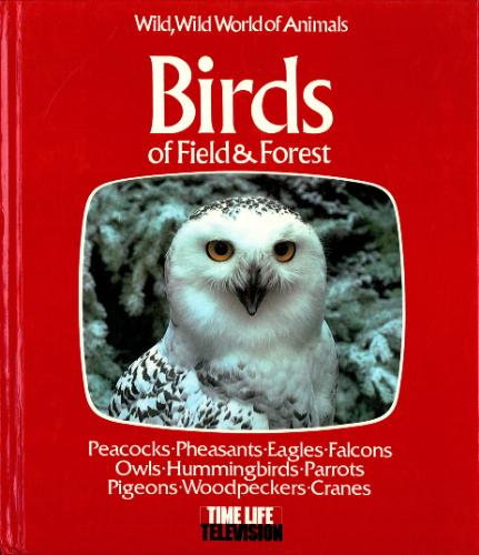 Birds of field & forest