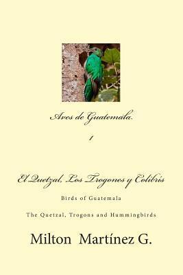 Aves de guatemala / Birds of Guatemala