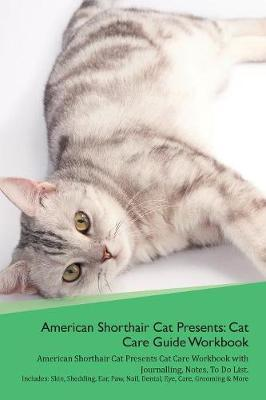 American Shorthair Cat Presents