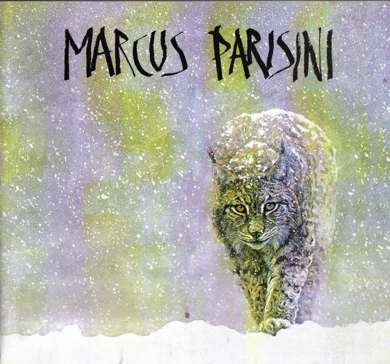 Marcus Parisini