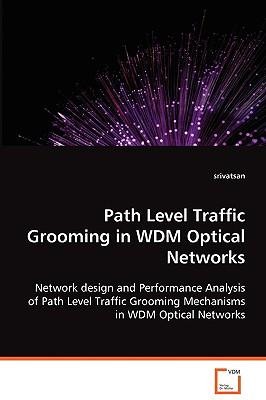 Path Level Traffic Grooming in Wdm Optical Networks