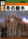 検索入門冬の樹木