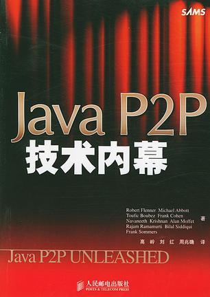 Java P2P技术内幕