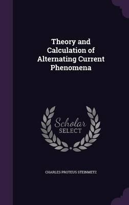 Theory and Calculati...