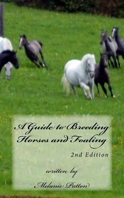 A Guide to Breeding Horses and Foaling