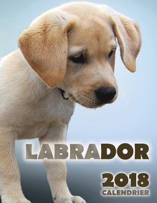 Labrador 2018 Calend...