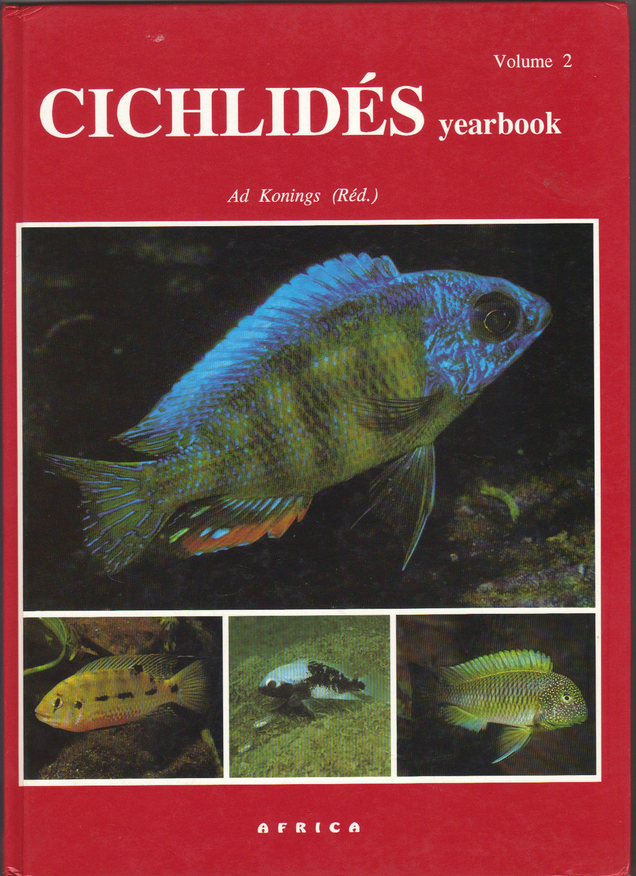 Cichlidès Yearbook. Volume 2